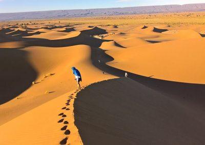 Nomád VándorLáss a Szaharában