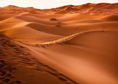 Nomád VándorLáss a Szaharában – 2019. november 12-19.