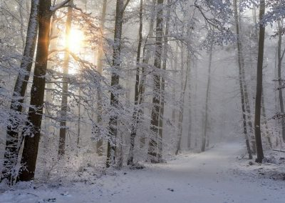 VándorLáss – Nagy Fátra (TLSTÁ, téli egynapos)