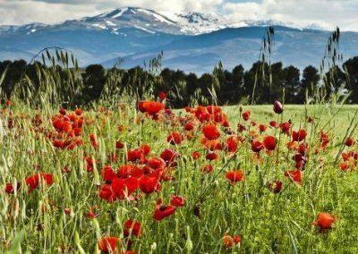 VándorLáss – Alpujara – Mulhacén (3482m)